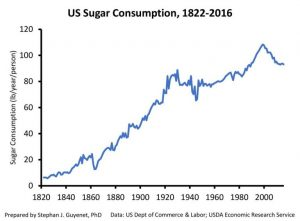 Sugar Consumption in the United States 1822 - 2016
